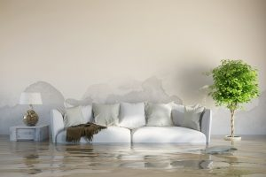 How to Clear Up Flood Damage in Your Home