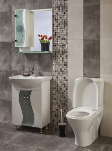Essential Plumbing Services in Cleveland Park, DC