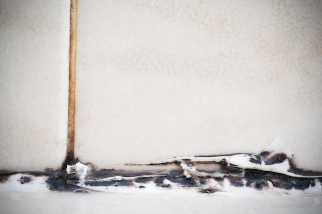 mold bathroom summer master plumbing