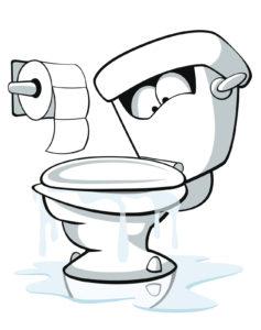 plumbing toilet paper toilets master plumbing